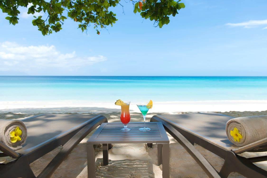 Лучший пляж в мире, черепахи и кокосовый ром: зачем лететь на Сейшелы Лучший пляж в мире, черепахи и кокосовый ром. Зачем лететь на Сейшелы? 14289776 561909700660665 4206778402783544637 o