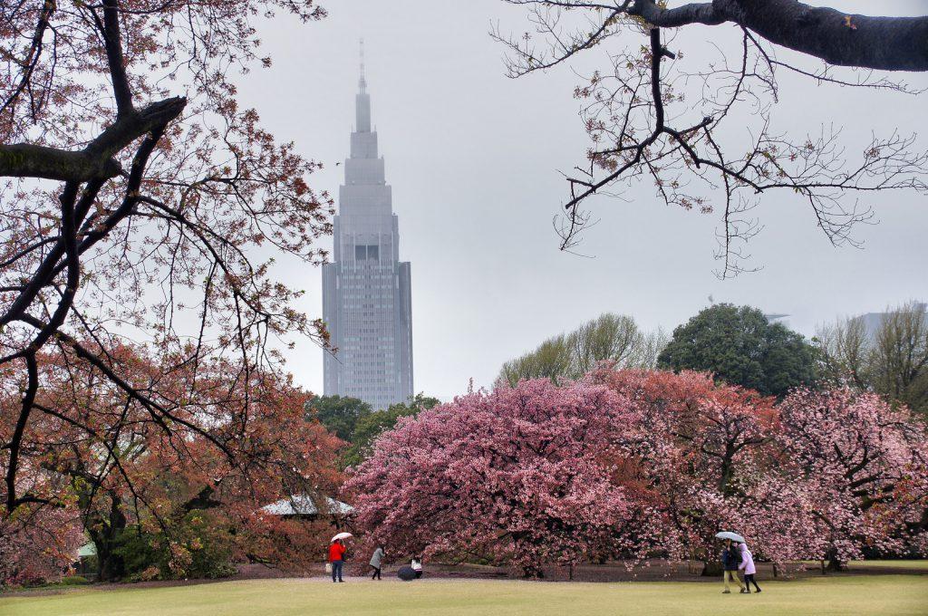 Где остановиться в Токио?