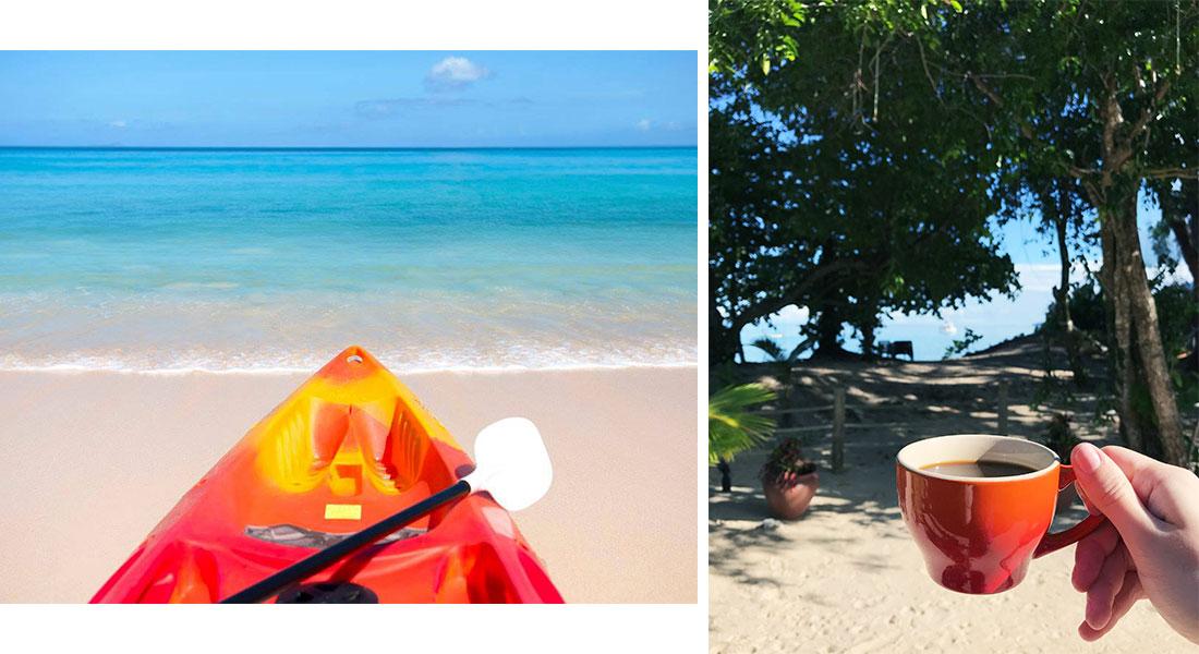Лучший пляж в мире, черепахи и кокосовый ром: зачем лететь на Сейшелы Лучший пляж в мире, черепахи и кокосовый ром. Зачем лететь на Сейшелы? 3 9