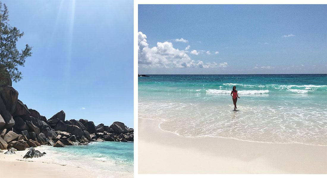 Лучший пляж в мире, черепахи и кокосовый ром: зачем лететь на Сейшелы Лучший пляж в мире, черепахи и кокосовый ром. Зачем лететь на Сейшелы? 5 9